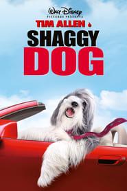 Shaggy Dog – Papà che abbaia non morde