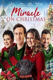 Miracle on Christmas (2020) Watch Online Free