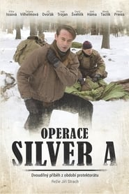 Operace Silver A 2007