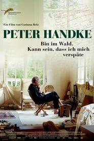 Peter Handke - Bin im Wald. Kann sein, dass ich mich verspäte movie