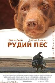 Червоний пес