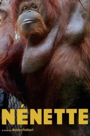 Nénette 2010