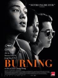 Burning BDRIP TRUEFRENCH