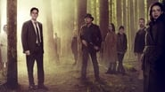 Wayward Pines en streaming