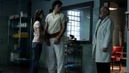 Smallville Season 6 Episode 12 : Labyrinth