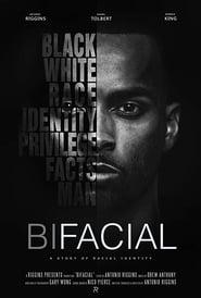 BiFacial 2017
