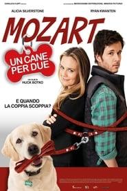 Mozart, un cane per due