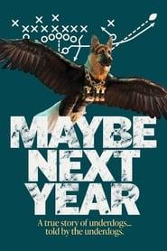 Maybe Next Year