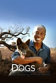 Dogs: An Amazing Animal Family 2017