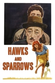Hawks and Sparrows 1966