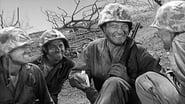 Iwo Jima images