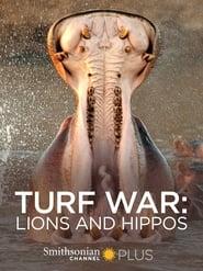 Turf War: Lions and Hippos