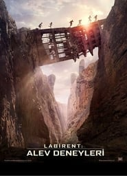 Maze Runner: The Scorch Trials – Labirent: Alev Deneyleri
