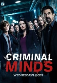 Criminal Minds: Sezonul 13