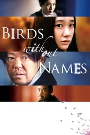 Poster Birds Without Names