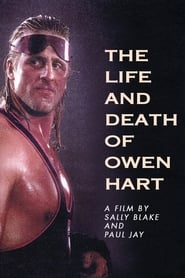 The Life and Death of Owen Hart (1999) Oglądaj Online Zalukaj
