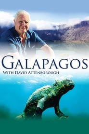 Galapagos 3D with David Attenborough 2013