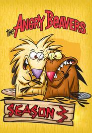 The Angry Beavers Season 3