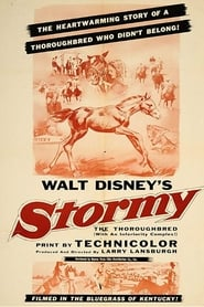 Stormy, the Thoroughbred 1954
