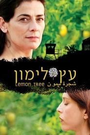 Lemon Tree 2008