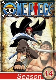 One Piece: 14ª Temporada
