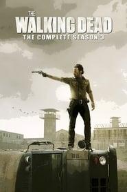 The Walking Dead Season 3 Episode 9