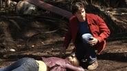 Smallville 7x2