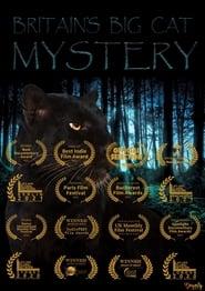 Britain's Big Cat Mystery