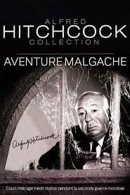 Малагасийская авантюра