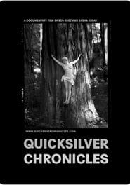 Quicksilver Chronicles (2019) Online Cały Film Zalukaj Cda