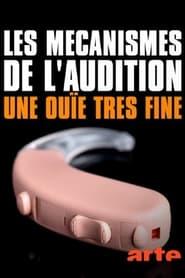 Les mécanismes de l'audition – Une ouïe très fine