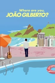 Where Are You, João Gilberto?