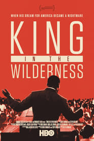 La lucha pacífica de Martin Luther King / King in the Wilderness