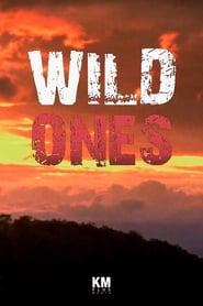 Wild Ones 2014