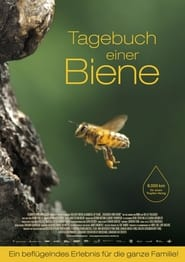 Diary of a Bee