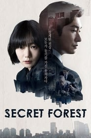 Stranger (Secret Forest)