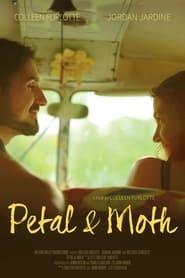 Petal and Moth (2019)
