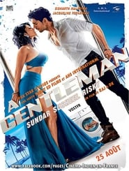 A Gentleman (2017) Hindi Full Movie Watch Online Download