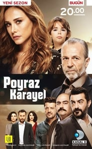 Poyraz Karayel streaming vf poster