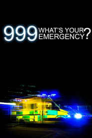 999: What's Your Emergency? 2012