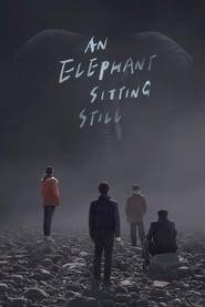 Poster An Elephant Sitting Still