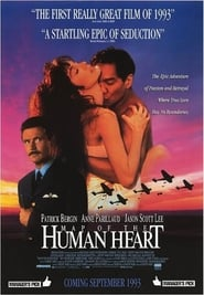 Poster Map of the Human Heart 1993