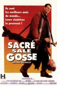 Sacré sale gosse streaming