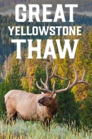 Great Yellowstone Thaw streaming vf poster