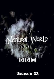 Natural World Season 23