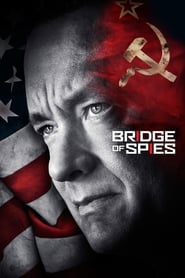 Bridge of Spies (2015) BluRay 480P 720P Dual Audio [Hindi+English] Gdrive
