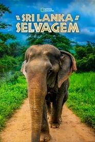 Sri Lanka Selvagem