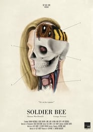Soldier Bee