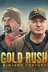 Gold Rush: Winter's Fortune (2021)