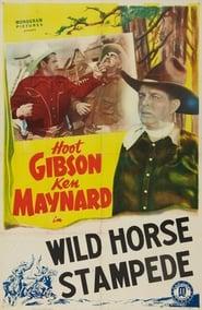 Wild Horse Stampede 1943